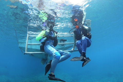 体験ダイビングのはじめの一歩